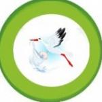 bio babaápolási termékek